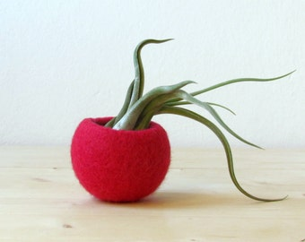 Red air plant pod / felt planter / micro succulent vase / Christmas red air plant display / winter decor