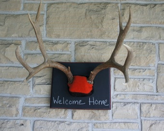 Antler Message Board Chalkboard Coat Rack Wedding Idea Woodland Rustic Unique Taxidermy