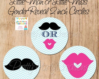 Little Man or Little Miss GENDER REVEAL 2 inch party circles - YOU Print - Instant Download