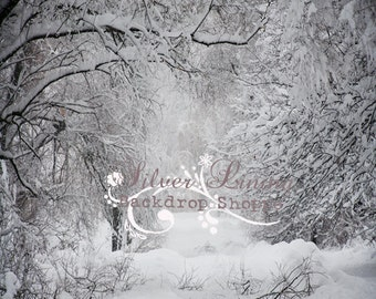 8'x8' Photography Backdrop Photo Prop Christmas Backdrop matte Vinyl Snow Covered Path 2
