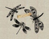 Dragonflies. Instant Download Digital Image No.245 Iron-On Transfer to Fabric (burlap, linen) Paper Prints (cards, tags)