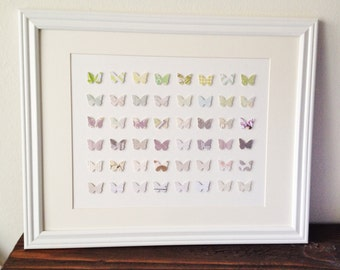 3D Butterfly Wall Art /// 14in x 18 in // Matted and Framed