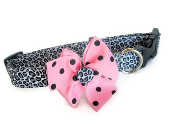 Leopard Cheetah Dog Collar size Extra Large
