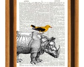 Rhino Bird Print, Decorative art Rhinoceros and Bird, vintage  illustrations,  nursery art, decoration for kids room