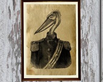Pelican print animal art bird illustration Old paper home decor AK361