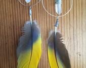 Parrot Feather & Quartz Earrings