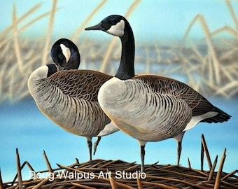 Canada Geese Original Painting, Wildlife Art, Waterfowl, Hunting, Wall Art, artist Doug Walpus