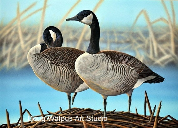 Canada Goose Original Painting, Wildlife Art, Waterfowl, Hunting, Wall Art, Home Decor by Doug Walpus