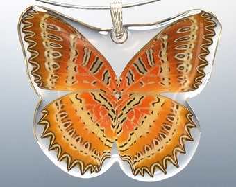 Real Whole Butterfly Pendant Necklace, Biblis Biblis