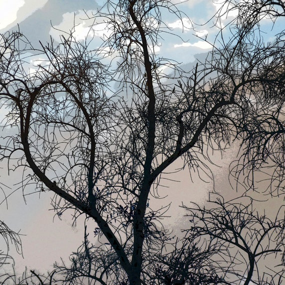 CRAGGLY TREE PRINT, Art/Photography, Landscape, Nature Abstract, For Him, Teens, Blue Clouds, Home Décor, Under 25, Etsy ArtBJC
