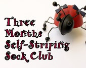 Three Months Self Striping Sock Club:  March, April, May 2016