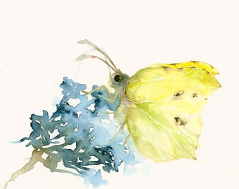 Art Print of Watercolor Artwork Butterfly and Flower