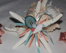 Popular Items For Starfish Seashells On Etsy