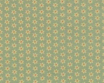 Sale - Honky Tonk Patina by Eric and Julie Comstock - One Yard - 37086 13