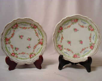 Small Austrian Set of 2 Plates
