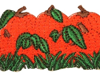 ID #0826 Pumpkin Pile Fall Food Autumn Season Embroidered Iron On Applique Patch