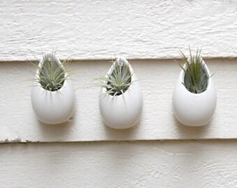 Set of 3 Mini Matte White Ceramic Hanging Planters, Wall Hanging Planters, Air Plant Hanging Planters, Hanging Ceramic Vases, Modern Vases