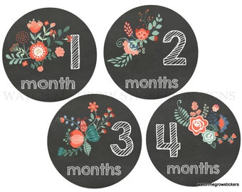 Baby Monthly Stickers Baby Month Stickers Baby Girl Monthly Stickers Milestone Chalkboard