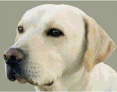 Yellow Lab Labrador Retreiver Counted Cross Stitch Pattern Chart PDF Download by Stitching Addiction