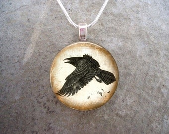 Crow Jewelry - Bird Jewellery - Glass Pendant Necklace - Raven 14