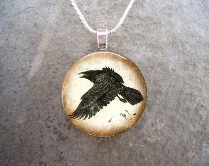 Crow Jewelry - Bird Jewellery - Glass Pendant Necklace - Raven 14