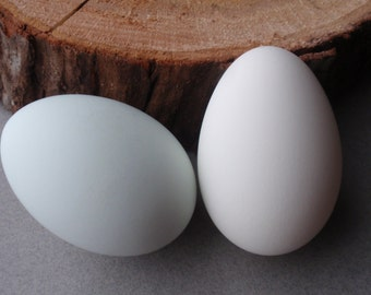 Eggs, Two Duck Eggs (White and Green), Eggs for Pysanky, Eggs for Ornaments, Easter Eggs, Eggs for Crafts