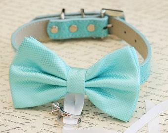Blue Bow Tie Dog ring bearer collar, Pet accessory, Beach wedding, proposal, something blue