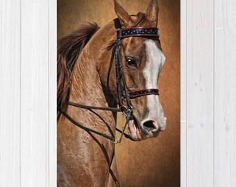 Throw Rug Area Rug Arabian Horse Shower Curtain Combo