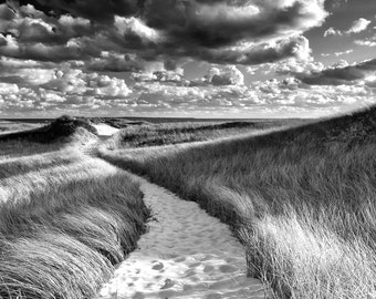 Black and White Beach Photography Oversized Print Large Wall Art Martha's Vineyard Cape Cod Beach Path Sea Grass Dunes Grey Silver Coastal
