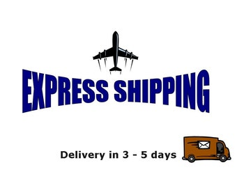 Express Delivery International, Rush Order, Fast Shipping, Express shipping, Upgrade shipping,