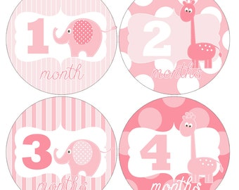 Set of 12 Round Monthly Stickers Pink Giraffes and Elephants Photo Props Keepsakes - MOSG037