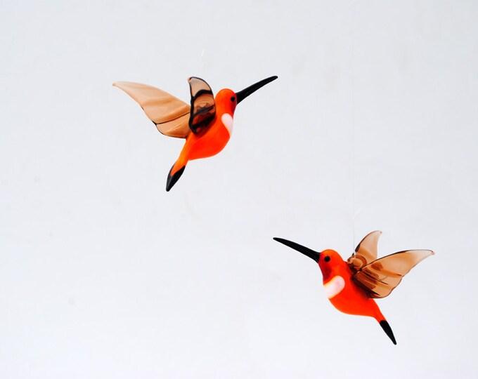 e36-255 Rufous Hummingbird
