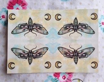 Moth & Moon Postcard Print