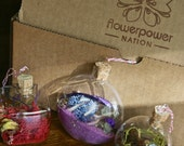 Set of 3 OOAK Seed Bomb Glass Ornaments miniature terrariums