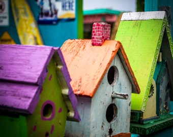 Birdhouses, Birdhouse Photography, Florida Photography
