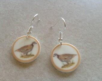 quail earrings lightweight  desert southwest