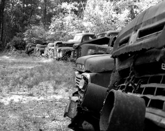Vintage Trucks Black and White
