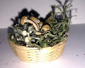1.12 scale witches herb and mushroom basket