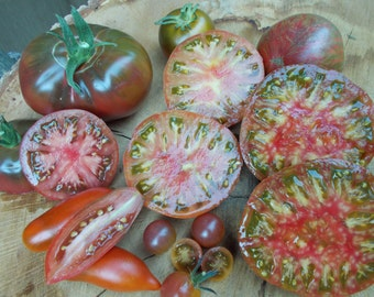 Purple Tomato Heirloom Seed Collection, organic seeds, heirloom vegetables seeds gardening tomato plants