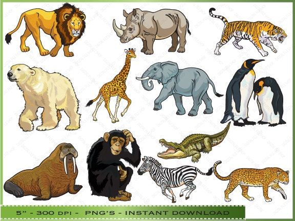 free clipart zoo animals - photo #28