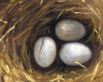 "Jennifer Berry Fine Art  ""Nest"" 8x10 Original Artwork Bird Egg Nest Oil Painting on Canvas"