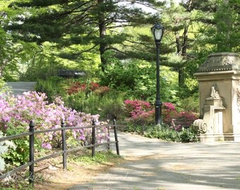 Central Park Photography, New York, 8x12 Fine Art Print, home decor, Springtime on the Terrace, Spring photography