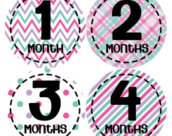 Monthly Baby Stickers Baby Month Stickers Baby Girl Month Stickers Monthly Photo Stickers Monthly Milestone Stickers 262