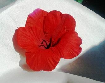 HIBISCUS HAIR Clip-Tropical Hair Flower, Wedding flower, Headpiece, Hawaiian flower clip, Silk Hair Flower, Wedding Accessory, Beach Wedding