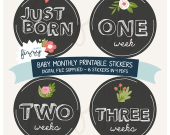 16x Baby Monthly Milestone Girl Stickers Printable Instant Download - Digital file only. BM0009