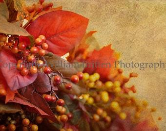 Edges of Autumn - Fine Art Photography - Digital Download Photography - screen saver - computer wallpaper - William A Britten