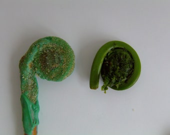 Fiddlehead Pretzel Pop Candies-A Special Treat from Maine (Set of 6)