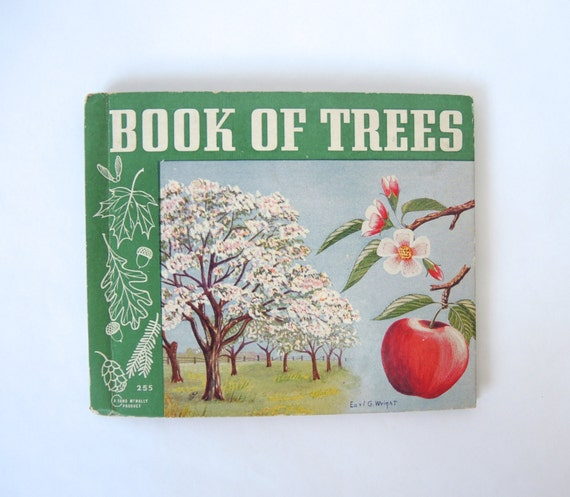 Vintage Book of Trees, Rand McNally 1939.  Illustrated by Earl G. Wright, line drawings and color, watercolor, Michigan State Flower
