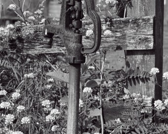 Old Water Pump B&W Fine Art Print