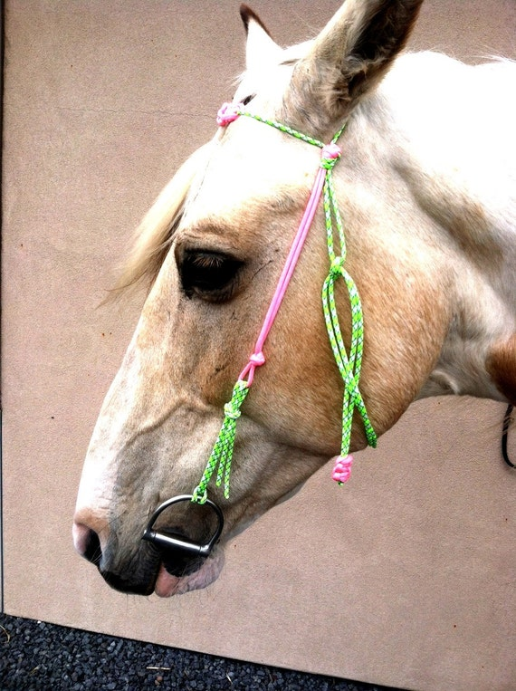 Unavailable listing on etsy for Paracord horse bridle